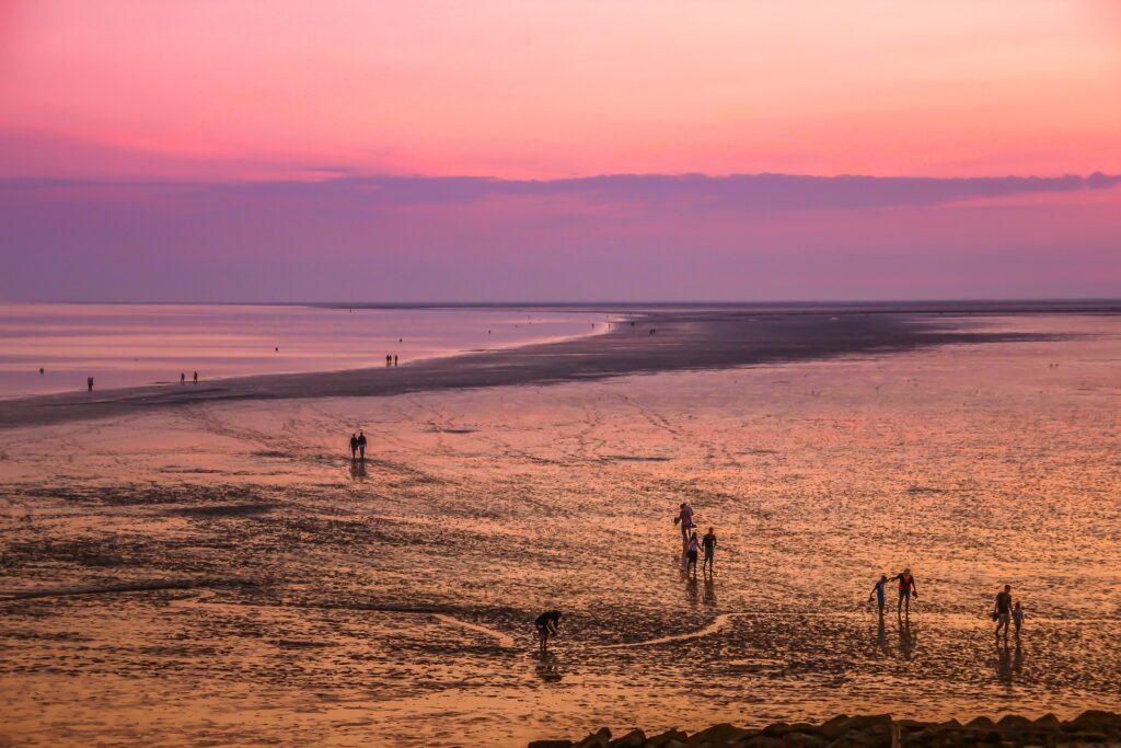 Wadlopen Friesland